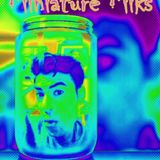 MiniAture Miks 1.0 Tech House/Techno