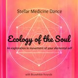 18-09-08 Stellar Medicine Dance /// Ecology of the Soul ***A Ritual for your Elemental Self
