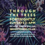 Through The Trees  - 1Brighton fm 11.06.17