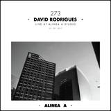 Alinea A #273 David Rodrigues