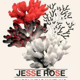 Danyelino & Hardline @ Treehouse Miami August 3rd 2012 (opening set)