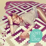 2014-01-03 Lost in Linz - Part 2: dMIT.RY