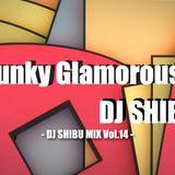 Funky Glamorous