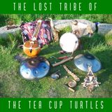 Friday Alternative - 17-Nov-2017 - part 4 - The Acoustic Hour - TLTOTTCT