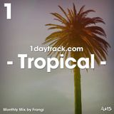 Monthly Mix February '19 | Frangi - Tropical | 1daytrack.com