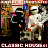 Classic House 01