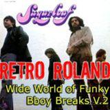 RETRO ROLAND - WIDE-WORLD OF FUNKY BBOY BREAKS V.2 - DEC, 2011