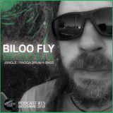 Artisto Prod - Podcast #15 / BILOO FLY - Décembre 2015