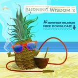 "Brother Wildman ""Burning Wisdom vol2"" inna Chalice connection"