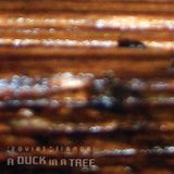 A Duck in a Tree 2014-10-25 | Authentic Past This Point