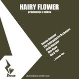DJ Hairy Flower - Divine Mix One