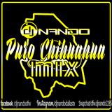 PURO CHIHUAHUA MUIX