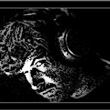 Aphex Twin - 2008 - Kildare, Ireland