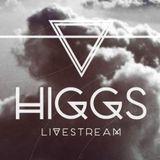De Sluwe Vos @ HIGGS 30-08-2013