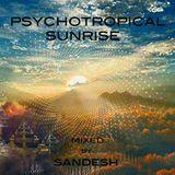 Psycotropical Sunrise - Psymbiosis (Maharettta Records)