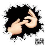 DJ Ren + Mentalien at Dzsungel Konyve 2017.09.19.