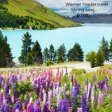 Werner Niedermeier_Spring 2015_DJ Mix