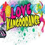 Kangoodance Fitnessparati