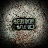 Gewoon Hard - 4 - Naadt - @ Cryptodome's place