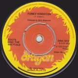 Tetsu45 - Funky Kingston - 26 Funky Reggae Mix - 20140221