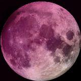 Luna Rosa-Beatan-Blackout III