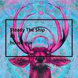 Steadt The Ship #5 House Mix