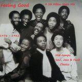 Feeling Good 6MS mix