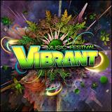 Guru live at Vibrant Festival