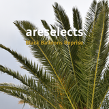 Areselects Black Balloons Reprise (22 May 2019) | Rodon fm 95