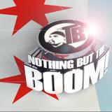 Nothing but the Boom | Electro House Mix | DJ Tony Badea aka Boom Boom |  January 2015
