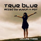 Progressions pres. True Blue Vol. 3 | Mixed by Yukun & P@t