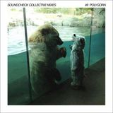 Soundcheck Collective Mixes #9 - Polygorn