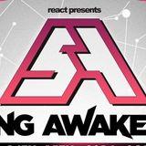 Steve Aoki @ Spring Awakening Music Festival Chicago, USA 2014-06-15