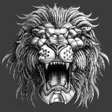 Go-Go Battle Kitty vs Robo-Lion