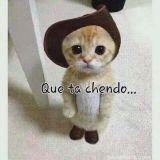 SALSA CHOKE...