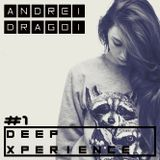 Andrei Dragoi @ Deep Xperience #1