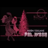 """""""Neon Tzigane"""" im Interview bei Dirk Busse auf Radio Hazzard Of Darkness (17.12.2018) engl / deutsch"""