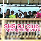 Spring Fling 2014 Live Mix