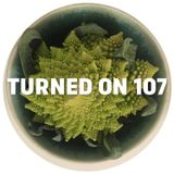 Turned On 107: Frits Wentink, Visionquest, Tevo Howard, Mr. C, Letherette, Harry Wolfman