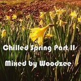 Chilled Spring Part II -  Woodzee 'A Spring Chill'