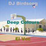Deep Colours DJ Birdsong - El Voc Collaboration