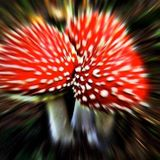 ॐLysergic-Vibesॐ PsyMiX 15/12/2013 ( Psytrance, Forest, Dark , Full )