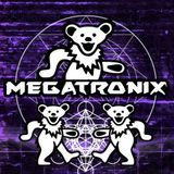 Megatronix- This is my House