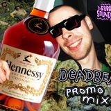 DEADBEAT - RubberDub SoundSystem 23/5/14 Promo Mix