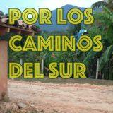 No 1 POR LOS CAMINOS DEL SUR / RADIO MIXANTEÑA