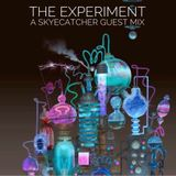 The Experiment - Guest Mix #1 by Skyecatcher