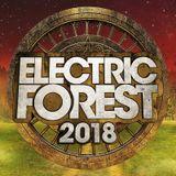 Spag Heddy 6/24/18 Tripolee, Electric Forest Week 1 2018