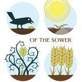 Parable of The Four Soils - P. Bonnie Dekold