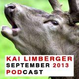 Kai Limberger Podcast September 2013