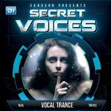 Sandero  -  Secret Voices 51 (Guest RO2) on DI.FM  - 05-Jan-2015